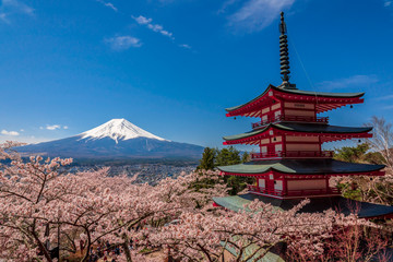 Chureito Pagoda and Mt. Fuji in the spring time with cherry blossoms at Fujiyoshida, Japan. Fototapete