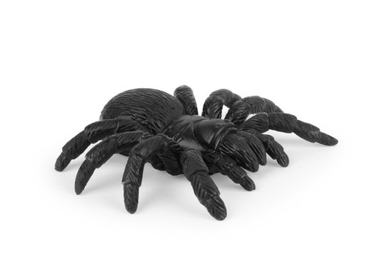 black spider toy isolated on white. Comic horror for Halloween.