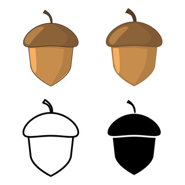 acorn icons. Vector illustration