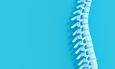 3d render image of a spine on a blue background.