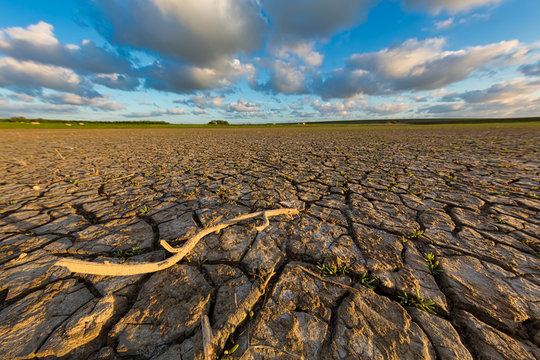 Arid and dry cracked land due to climate change and global warming - An ecological disaster