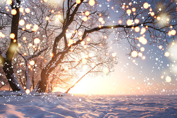 Christmas background. Magic glowing snowflakes in winter nature landscape. Beautiful winter scene with bokeh. Winter fairytale. Illuminated lights