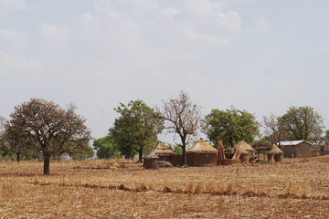 Savanna landscape in the agricultural region in the north of Togo