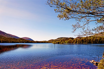 Loch an Eilein - Rothiemurchus, Cairngorms National Park - Scotland, UK