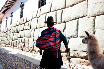 Rear view of man in colorful poncho walking with llama on street