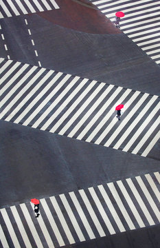 High angle view of people with umbrella walking on pedestrian crossing