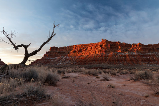 Valley of the Gods Sunrise Lone Tree