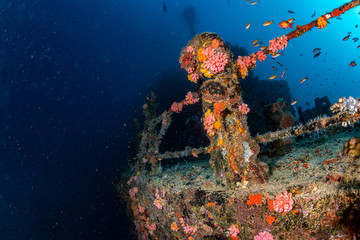 In de dag Schipbreuk liberty Ship Wreck in bali indonesia indian ocean