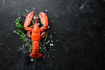 Lobster with spices on a dark background. Top view. Free copy space. Wall mural