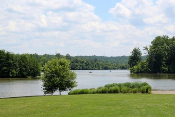A beautiful view of the lake in the park on a sunny day.
