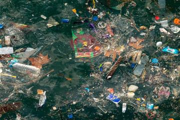 istanbul bosphorus marine pollution