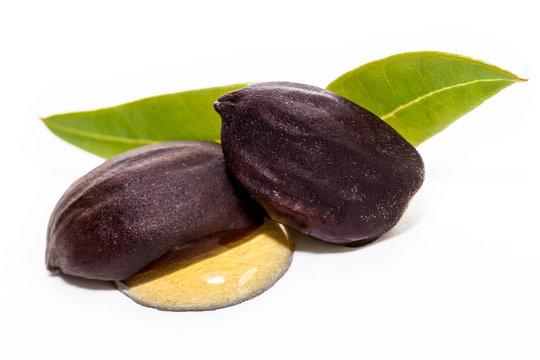 Jojoba oil on seeds isolated on white background