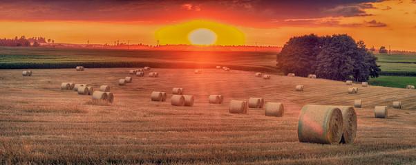 Fotoväggar - Landschaft im Sommer, Sonnenuntergang, abgeerntete Getreidefeld mit Strohballen, Panorama