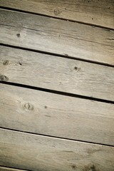 Wood background view