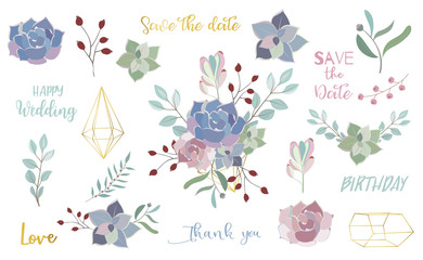Wall Mural - pastel flower set with flower,cactus,leaves,wreath,geometric.Vector illustration for sticker,postcad,birthday invitation.Editable object