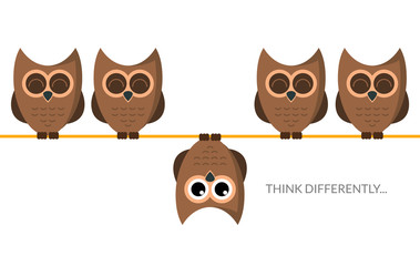 Wall Murals Owls cartoon Think different funny idea concept. Unique minimal leader owl stand. Think differently leadership