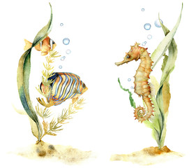 Watercolor compositions with tropical fishes and seahorse. Hand painted underwater floral illustration with algae and air buble isolated on white background. For design, fabric or background.