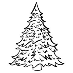 Hand drawn vector illustration of a fir-tree. black, white, isolated, outline, doodle.