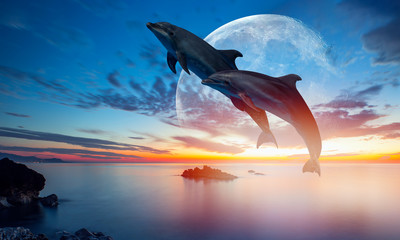 Fotobehang Dolfijn Silhoutte of beautiful dolphin jumping up from the sea at sunset with super moon
