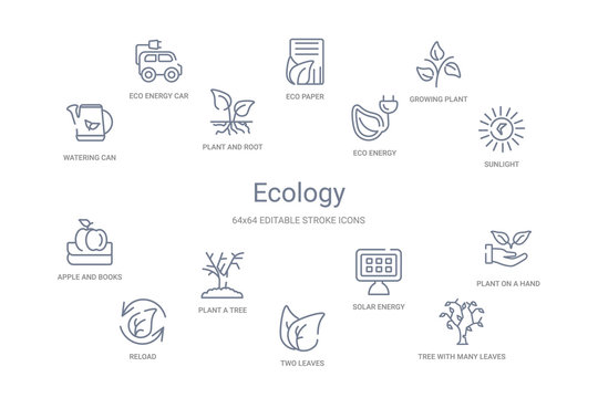 ecology concept 14 outline icons