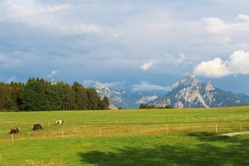 Blick auf den Säuling bei Füssen, Ostallgäu, Bayern