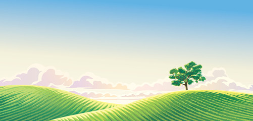 Poster Blauw Rural dawn landscape with sown fields and a lonely tree.