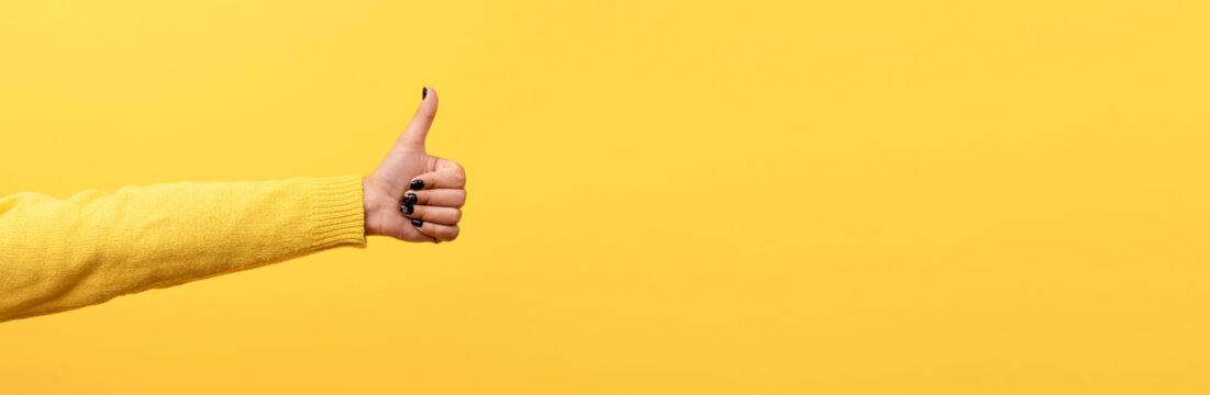 thumb up, like sign  over trend yellow background, panoramic image