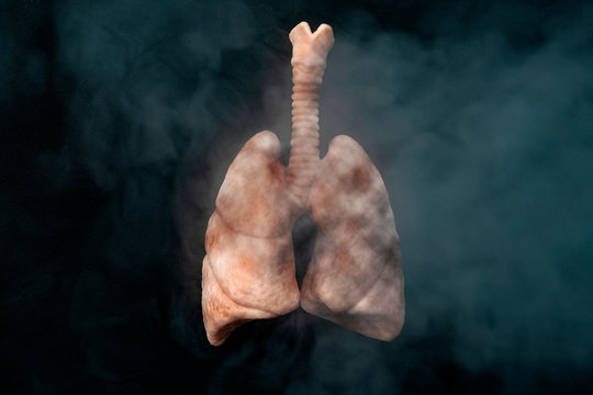 Cigarettes harm your health, lung cancer, no smoking and nicotine addiction concept theme with diseased lungs inhaling cancerous smoke on black background