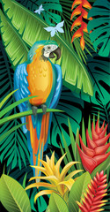 Background with tropical jungle plants and parrot