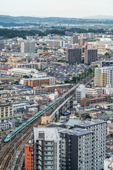 Wall Mural - city skyline aerial view of Sendai in Japan