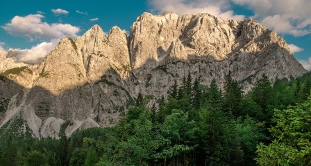 Wall Mural - Mount Prisojnik Summer Vista
