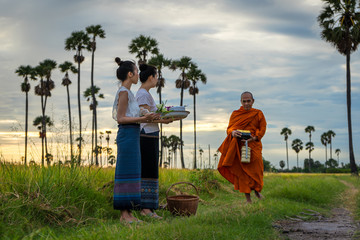 Women in old traditional dress make merit with monk are walking on a routes between rural village at the green rice field is according to the beliefs of Buddhism in Thailand