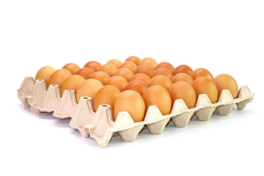 Eggs in carton isolated on white background. Organic eggs in recycled paper carton packaging.