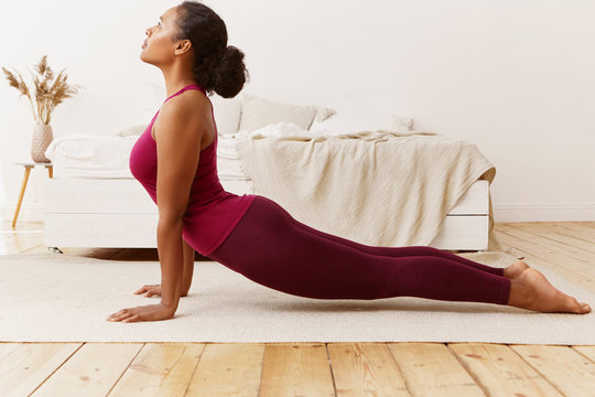 Fitness, sports, wellness and health concept. Gorgeous young mixed race woman with flexible fit body training on carpet in bedroom, doing backbend yoga stance, standing in upward facing dog pose