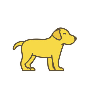 Cute dog puppy. Animal pets. Young Labrador retriever. Yellow pup with contour line. Vector illustration.