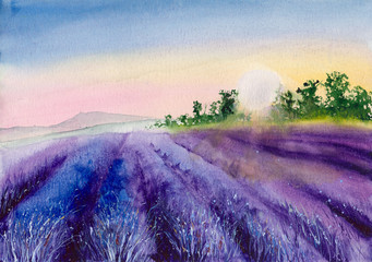 Watercolor picture of purple lavender field in sunset with trees on the horizon
