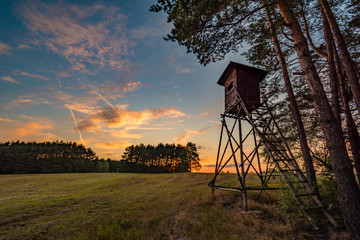 Photo sur Plexiglas Chasse Deer stand (tree stand) beside field and forest at sunset light, Czech republic