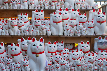 Lucky cat on shelf in Gotokuji temple Tokyo Maneki neko Japan culture