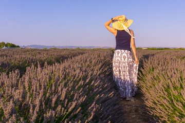 Woman with hat in a lavender field. Olite Navarra