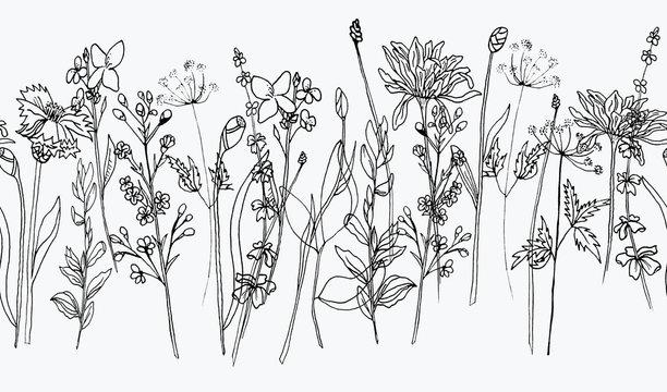 Hand draw ink wildflowers, wallpaper border, pattern white