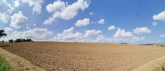 Blanke Erde im Panorama