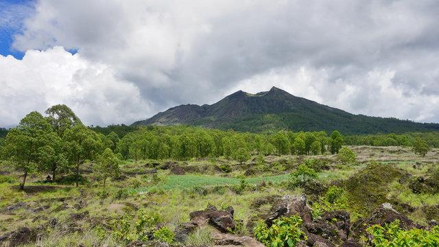 Mount Batur View , Kintamani, Bali, Indonesia. Green scenery of Mount Batur.
