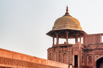 Amazing view of red sandstone octagonal tower with dome, Agra