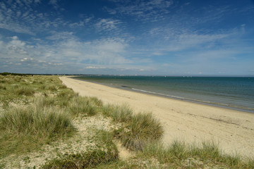 The sandy beach and dunes at Studland Bay near Swanage in Dorset on the South Coast