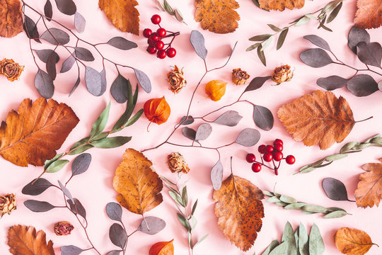 Autumn composition. Pattern made of dried leaves, flowers on pink background. Autumn, fall concept. Flat lay, top view, copy space