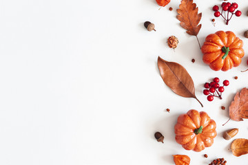 Autumn composition. Dried leaves, pumpkins, flowers, rowan berries on white background. Autumn, fall, halloween, thanksgiving day concept. Flat lay, top view, copy space Fototapete
