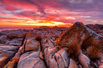 Papiers peints Grenat Rich red sunrise over the rocky coast Australia