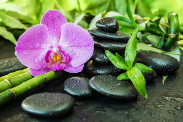 Spoed Foto op Canvas Orchidee Spa concept with zen stones, orchid flower and bamboo