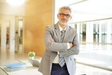 Mature businessman standing at desk in modern office