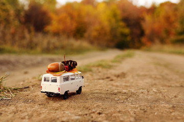 miniature toy car minivan carries on the roof yellow leaves, aco